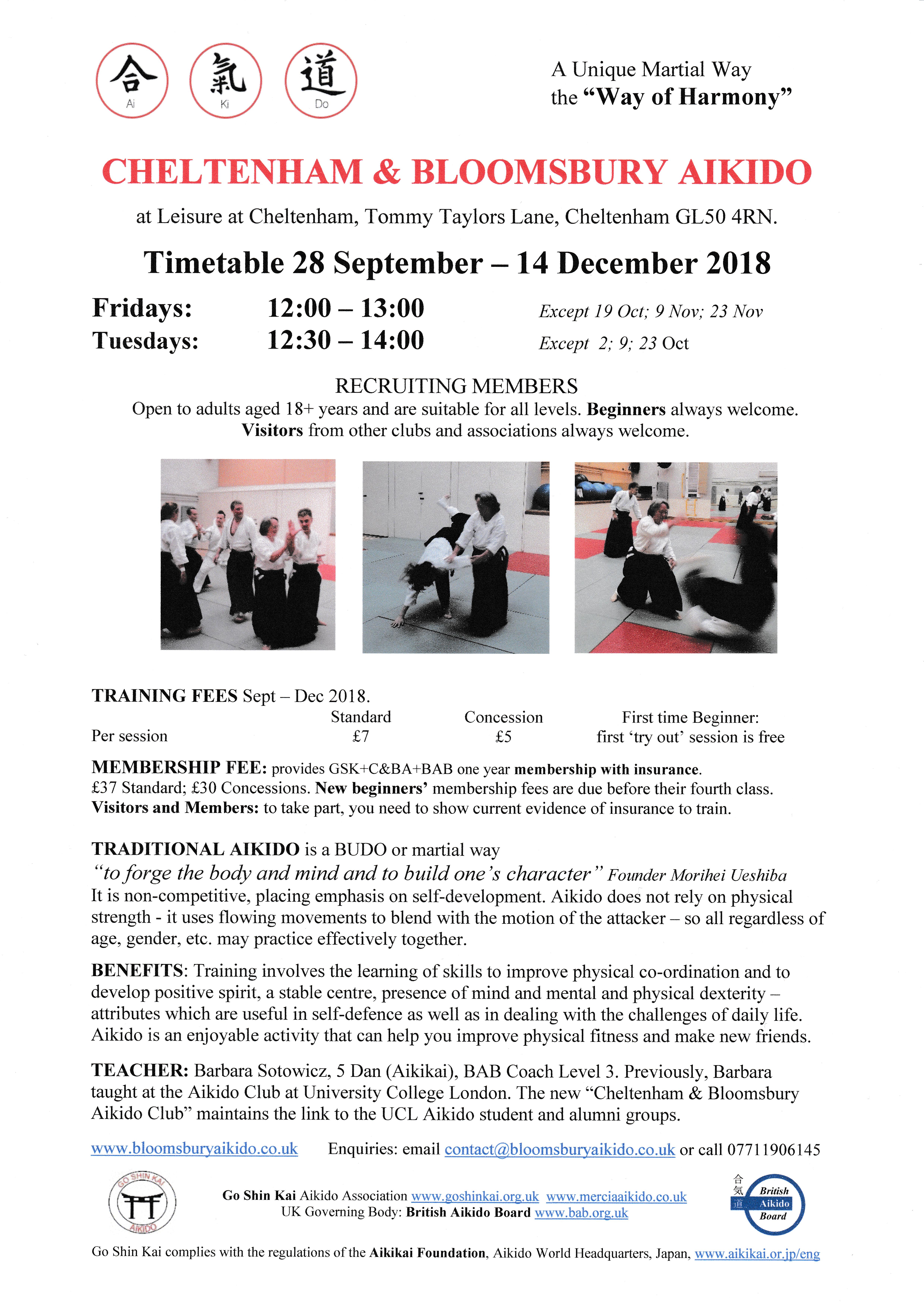 C B Aikido Weekday Daytime Training New Year 2019 Classes Resume